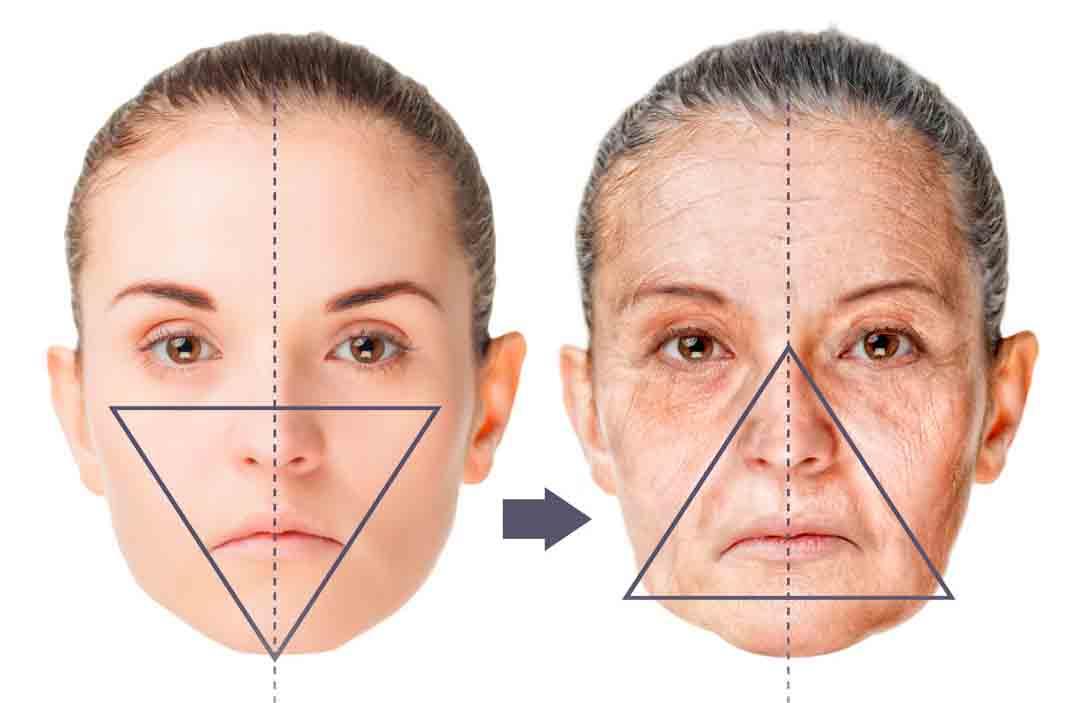 proceso-de-envejecimiento.jpg